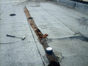 Commercial Roof Repair – Leaking Roof on Cleveland's West Side